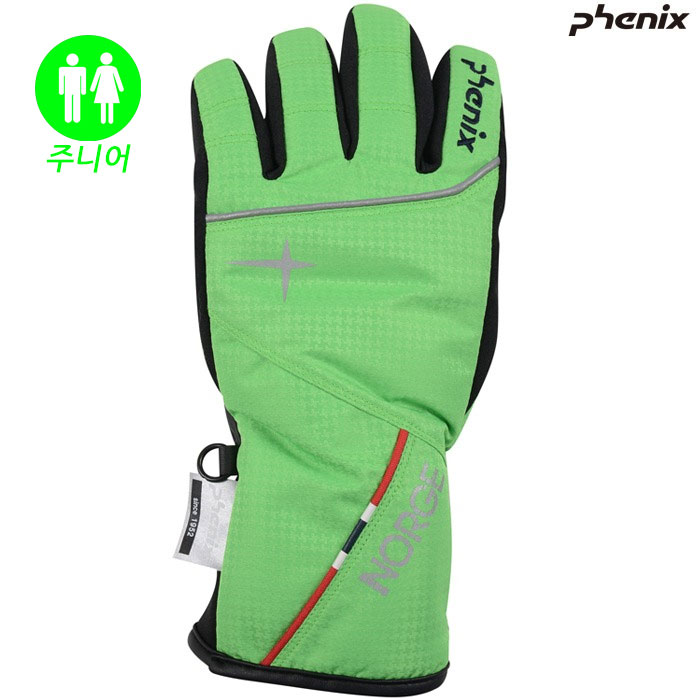 피닉스 주니어 스키장갑 PHENIX Norway Team Boy`s Gloves(GN)(18/19)