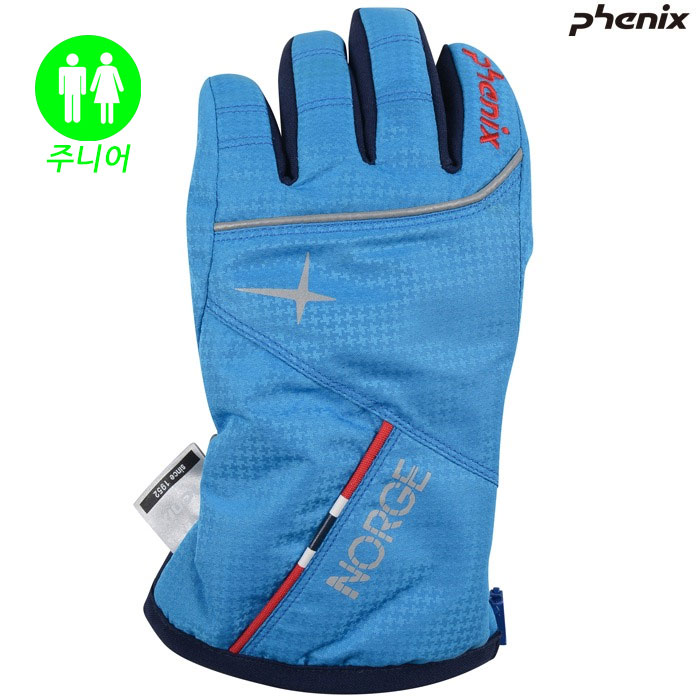 피닉스 아동 스키장갑 PHENIX Norway Team Kid`s Gloves(BL)(18/19)
