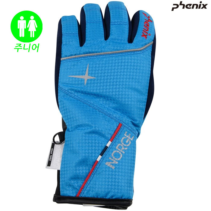 피닉스 주니어 스키장갑 PHENIX Norway Team Boy`s Gloves(BL)(18/19)